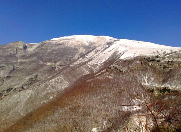 Cima del Monte Nerone